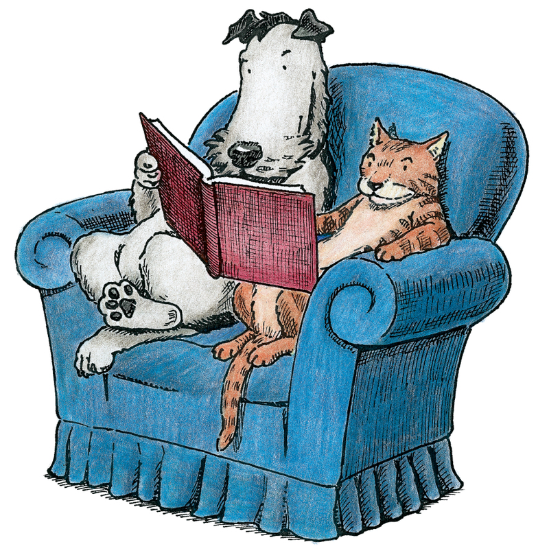 Διαβάζοντας το βράδυ..